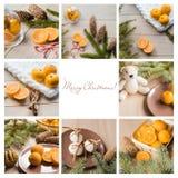 Коллаж с tangerines, пряник рождества, елевая ветвь дерева Место для вашего сочинительства на белой предпосылке Стоковое Изображение