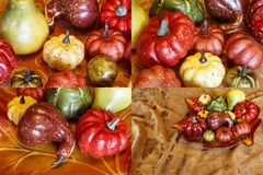 Коллаж украшения тыквы тыкв сбора осени Стоковые Изображения
