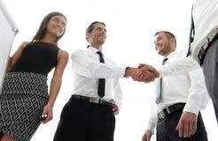 Коллеги дела рукопожатия после обсуждать новое представление Стоковые Фото
