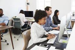 Коллеги работают на компьютерах в открытом офисе плана, взгляде со стороны Стоковое Фото