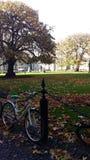 Коллеж троицы - Дублин Ирландия - центральная площадь Стоковые Фото