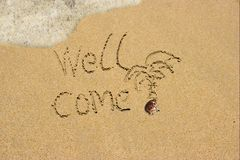 Колоец приходит на пляж песка. стоковая фотография