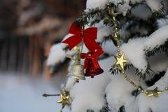 2 колокола рождества на ветви в зиме паркуют Стоковые Фото