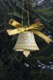 колокол золотистый Стоковые Фотографии RF