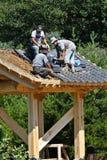 колокол садовничает корейские roofers meadowlark Стоковые Фото