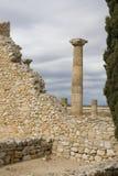 колонка римская стоковые фотографии rf