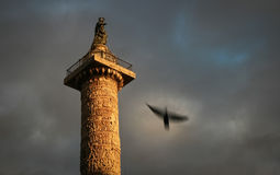 колонки Италия rome Адриана стоковое фото rf