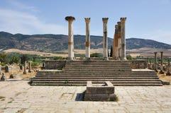 Колонки капитолия Volubilis, Марокко Стоковое Изображение