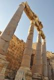 колонки римские Стоковые Изображения RF
