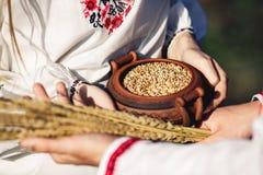 Колоски пшеницы и бака семян пшеницы держатся в руках парня и девушки в вышитых рубашках Стоковая Фотография RF