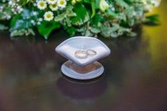 2 кольца, влюбленность и свадьбы Стоковые Фотографии RF