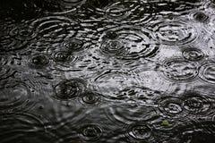Кольца воды струятся, струятся на воде стоковая фотография rf