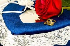 Кольца и красное Rose-3 стоковая фотография