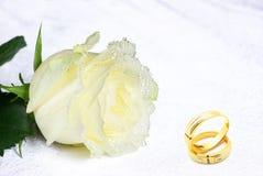кольца подняли Стоковые Фотографии RF