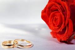 кольца подняли Стоковые Изображения RF