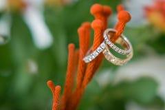 Кольца с бриллиантом свадьбы или захвата Стоковая Фотография
