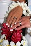 кольца цветков Стоковое фото RF