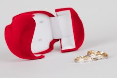 кольца 2 Стоковые Изображения RF