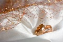 кольца 2 wedding Стоковое Изображение RF