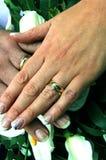кольца grooms перстов невесты wedding Стоковые Изображения
