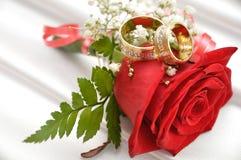 кольца wedding Стоковые Изображения RF