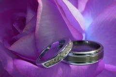 кольца wedding Стоковое Фото