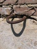 Кольцо в стене Стоковые Фотографии RF