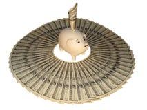 кольцо доллара Стоковая Фотография