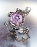 кольцо дракона Стоковая Фотография RF