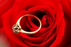 кольцо золота диаманта Стоковые Изображения