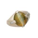 кольцо коуша s кота Стоковые Фотографии RF