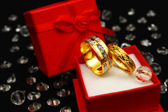 кольцо пар Стоковая Фотография RF