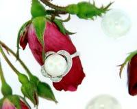 кольцо перлы Стоковая Фотография RF