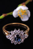 кольцо ювелирных изделий Стоковые Фото