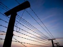 колючая железная проволока загородки занавеса Стоковое фото RF