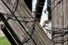Колючая проволока на старой деревянной балке стоковая фотография rf