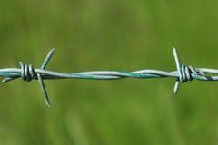 колючая проволока Стоковое Изображение RF