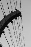 колючая проволока Стоковая Фотография RF