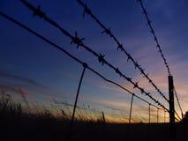 колючий восход солнца стоковое фото rf