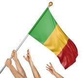 Команда людей вручает поднимать национальный флаг Мали Стоковое Изображение RF