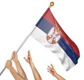Команда людей вручает поднимать национальный флаг Сербии Стоковые Фото