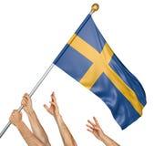 Команда людей вручает поднимать национальный флаг Швеции Стоковое фото RF