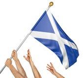 Команда людей вручает поднимать национальный флаг Шотландии Стоковое Изображение