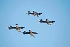 команда мычки сокола aerobatics Стоковые Изображения RF