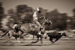 команда нерезкости roping Стоковые Фото