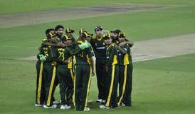 команда Пакистана сверчка стоковое изображение