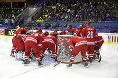 команда Польши льда хоккея стоковая фотография