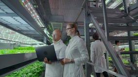 Команда ученых исследует овощи, который выросли в вертикальных фермах используя компьютеры и планшеты Ферма овоща  сток-видео