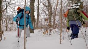 Команда 4 hikers идя через глубокий толстый снег с большими пакетами оборудования в лесе зимы сток-видео