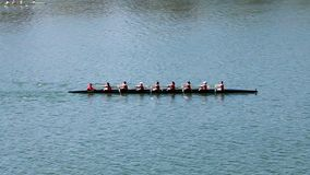 Команда rowing экипажа женщины разрабатывая на реке акции видеоматериалы